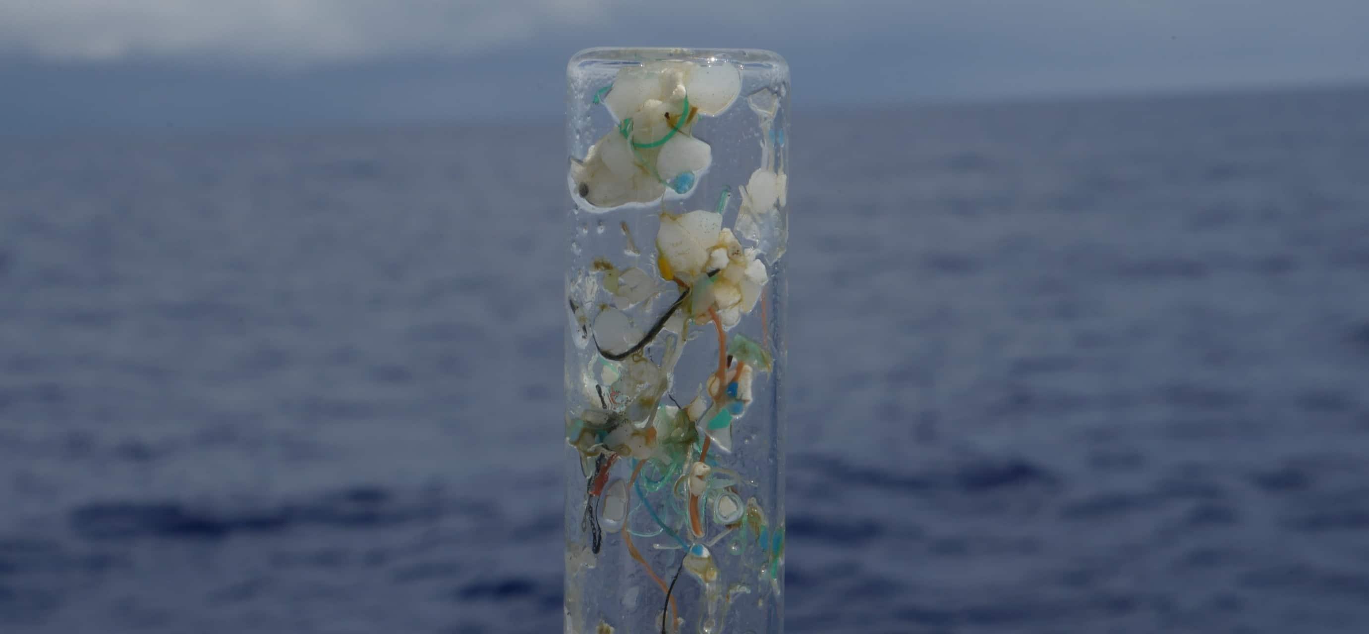 Tribune – Gardons Ensemble Le Cap De La Lutte Contre Le Plastique Dans Les Océans